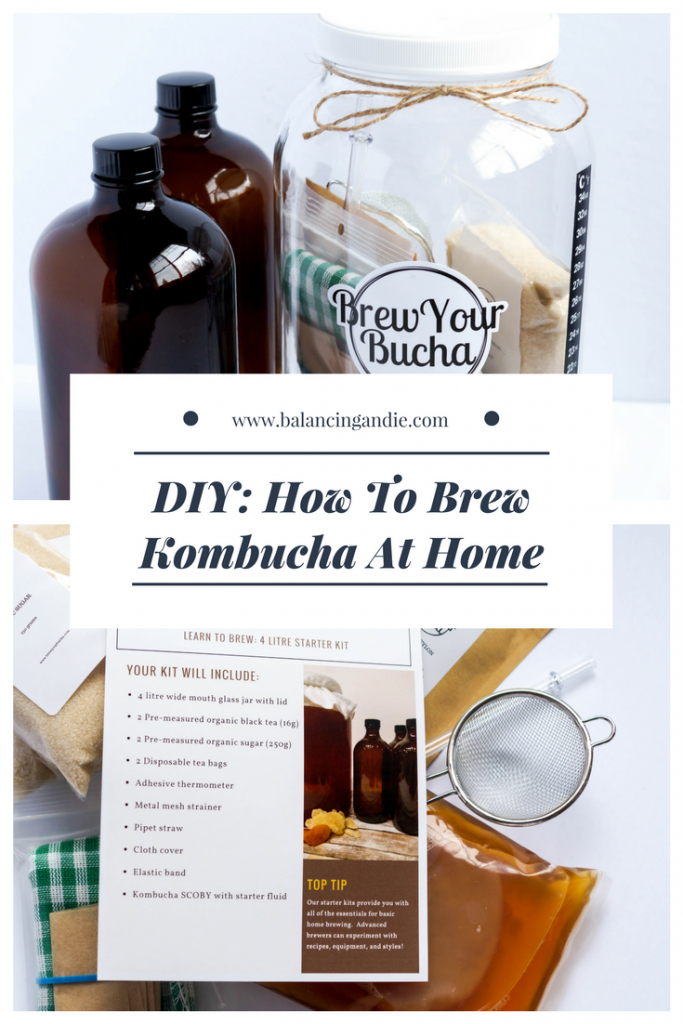 DIY: How To Brew Kombucha At Home